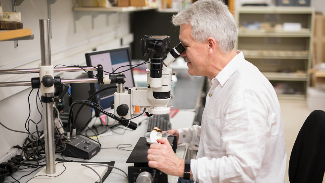 Sturt Manning, the Goldwin Smith Professor of Classical Archaeology, at work in the Cornell Tree-Ring Laboratory.