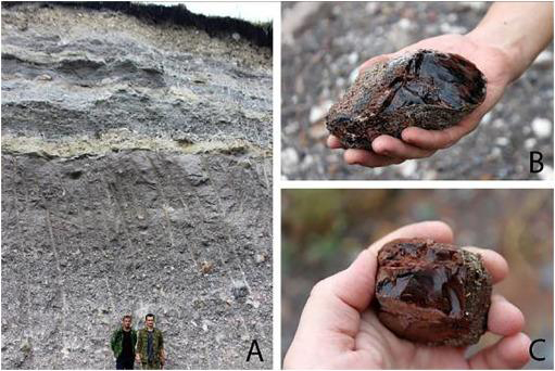 A - obsidian in rocks formed during the eruption; B, C - obsidian boulders (