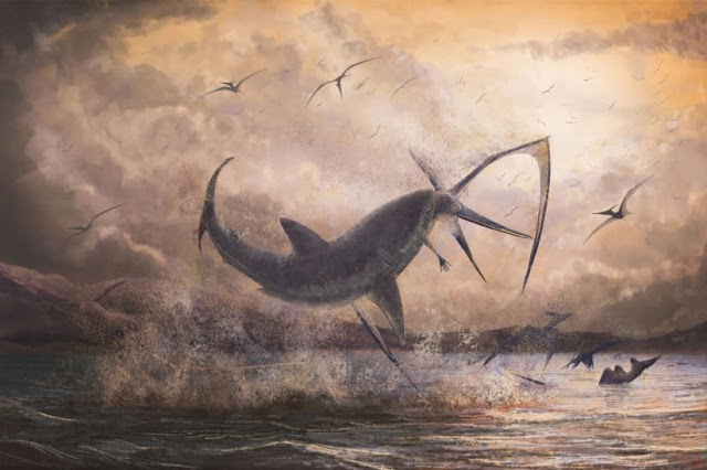 A USC scientist has documented the prehistoric occurrence of a shark species battling a pterosaur, 