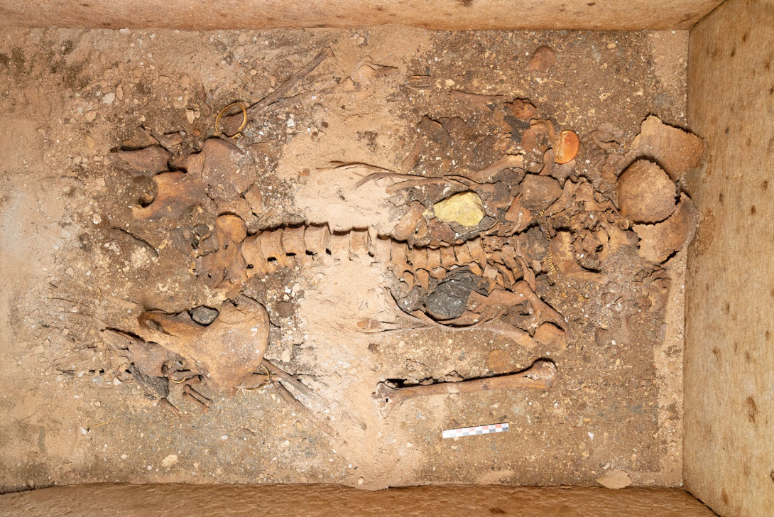 Among the exceptional archaeological finds was the burial of the prominent woman at Episkopi on Sikinos about which new important data was supplied.