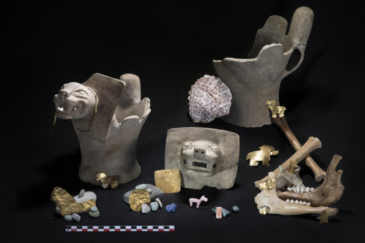 The team found ritual offerings consisting of ceramic feline incense burners; sacrificed juvenile llamas; and gold, shell and stone ornaments. Credit: Teddy Seguin