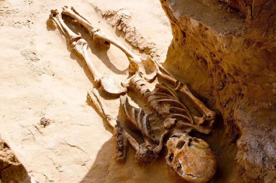 One of the three skeletons is seen here. Archaeologists don't yet know the gender and ages of the individuals buried in the kurgan. They also aren't sure how the individuals died so long ago. Photo Credit: Ministry of Culture and Tourism of the Astrakhan Region/Live Science.