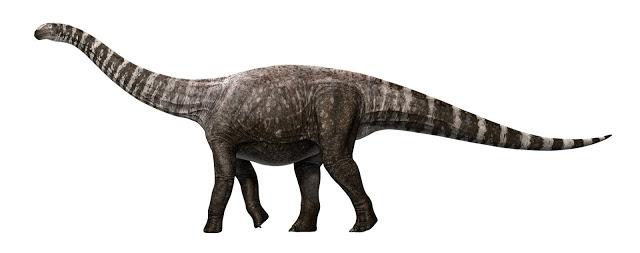 Artist's impression of Rhoetosaurus brownei, (c) Queensland Museum 2014. Credit: Credit: Konstantinov, Atuchin & Hocknull