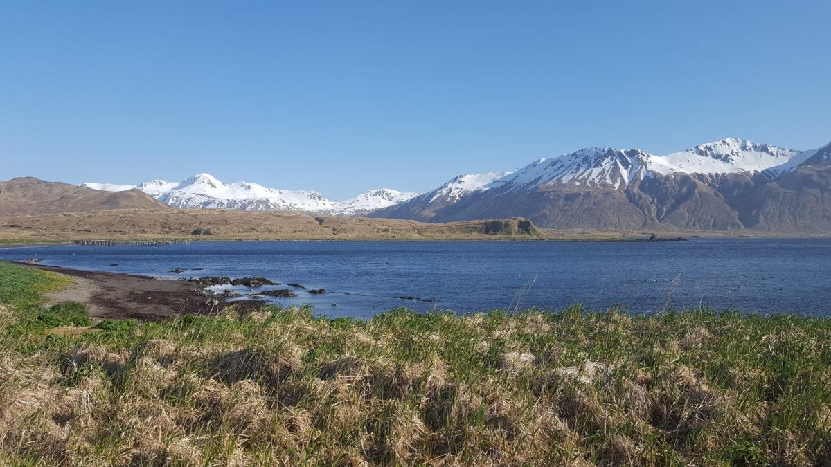 Attu Island, Aleutian Islands, Alaska. Credit: Jason Rogers