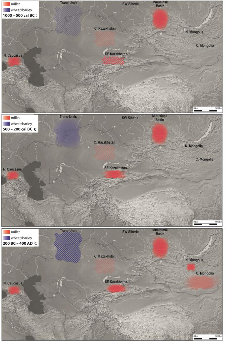 A meta-analysis of dietary information recorded in the bones of ancient animals and humans recovered from sites scattered across the Eurasian steppe, from the Caucasus region to Mongolia, demonstrates that pastoralists spread domesticated crops across the steppe through their trade and social networks. Researchers from Kiel University sifted through previously published stable isotopic data and applied new quantitative analyses that calibrate human dietary intake against environmental inputs. The results have allowed them to better isolate the timing of the incorporation of agricultural products into the diets of pastoral nomads and, crucially, link burgeoning socio-political networks to this dietary transformation.  Through a big data project that explored over a thousand stable isotope data points, researchers were able to find evidence for an early transition to agriculture - based on dietary intake across Eurasia.