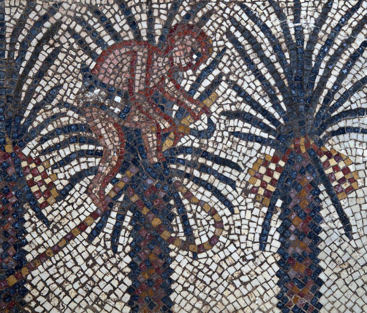 Elim mosaic detail, Huqoq Excavation Project. Copyright Jim Haberman. All rights reserved. Courtesy: UNC-Chapel Hill. Credit: Copyright Jim Haberman