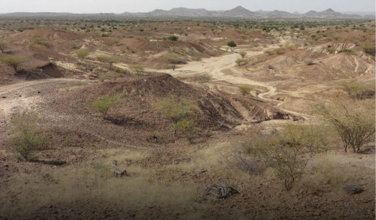 Kanapoi site in Kenya, east Africa. Credit: Carol Ward