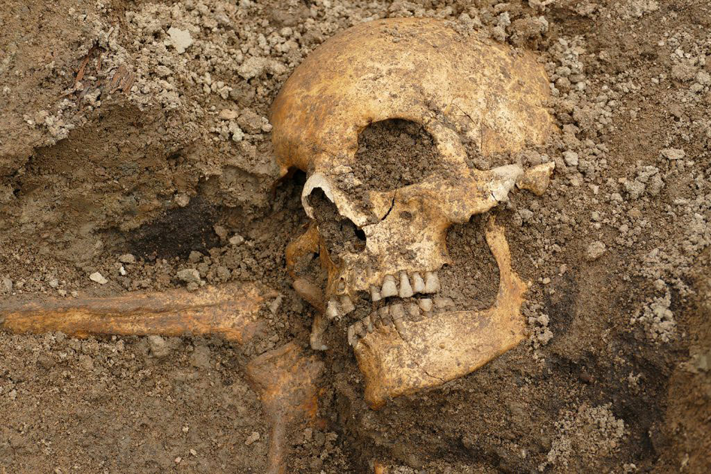 The remains of a man was discovered in the boat. Photo Credit: The Archaeologists.
