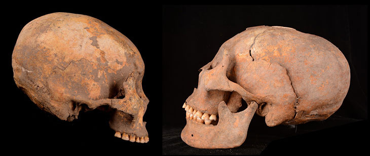 Artificially remodeled human skulls unearthed at a site in northeastern China include one of a man from around 12,000 years ago (left in this composite image) and another of a woman from about 5,000 years ago (right), a study finds. Photo Credit: Q. Wang/Science News.