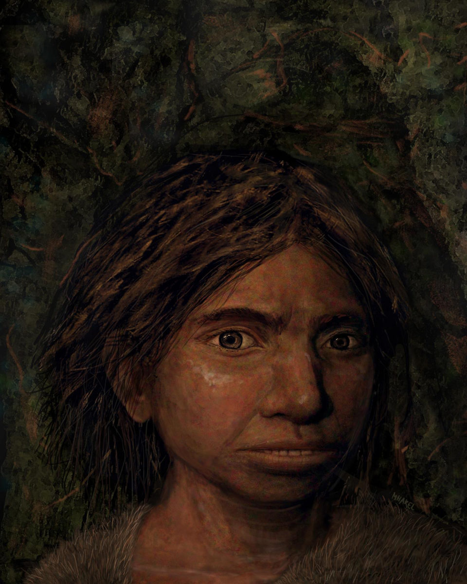 This image shows a portrait of a juvenile female Denisovan based on a skeletal profile reconstructed from ancient DNA methylation maps. Credit: Maayan Harel