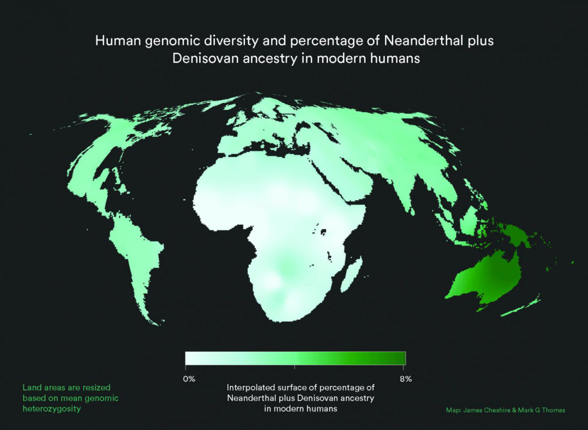 World map with land area resized to represent modern human genetic diversity and colour representing Neanderthal plus Denisovan ancestry. As can be seen, contributions from other populations to the Homo sapiens gene pool are small and unevenly distributed. Africa is disproportionately large because the great human genetic diversity - and hence the roots of humanity - are found here. Credit: James Cheshire/Mark G. Thomas