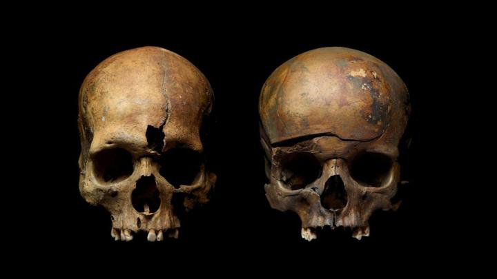 Skulls from mass grave in Yaroslavl, Russia, showing traces of violence. Credit: 