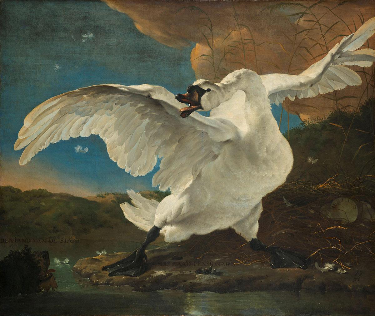 Jan Asselijn, The Threatened Swan, c. 1650. Amsterdam, Rijksmuseum.