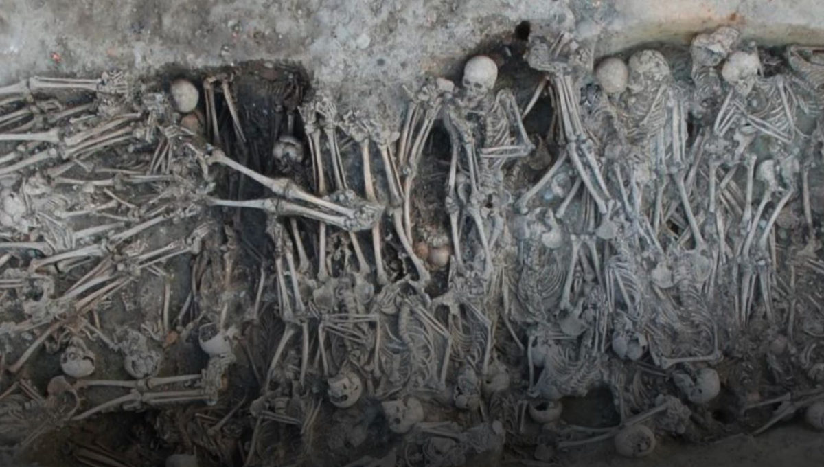 Mass grave dating to the Black Death period, identified in the '16 rue des Trente Six Ponts' archaeological site in Toulouse, France. Credit : Archeodunum SAS, Gourvennec Michaël