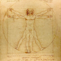 """Vitruvian Man"" to be exhibited at the Louvre"