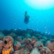 A sea strewn with shipwrecks