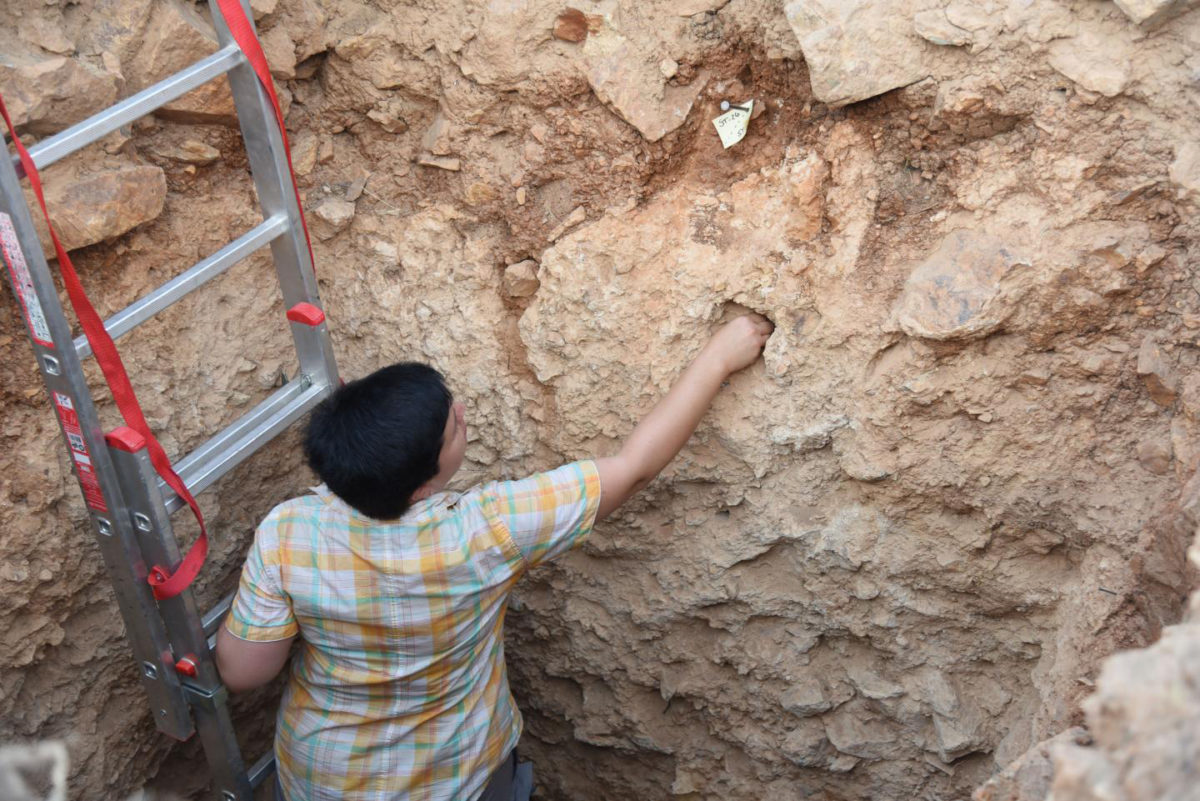 A researcher works at a trench at Stelida (Naxos, Greece). Credit: Evaggelos Tzoumenekas