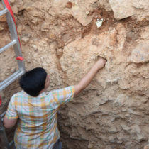 Early humans moved through Mediterranean earlier than believed
