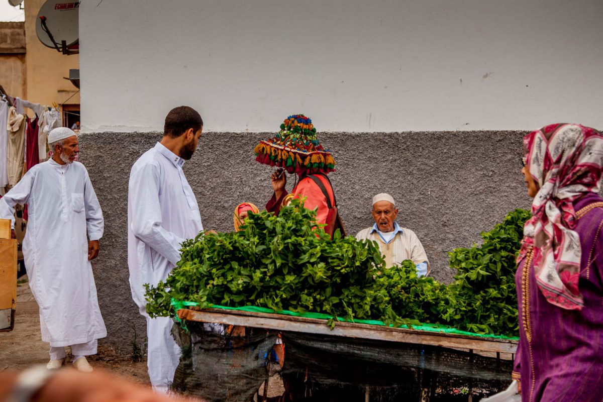 A water seller stands by a cart filled with mint, the essential ingredient for the preparation of Moroccan tea.