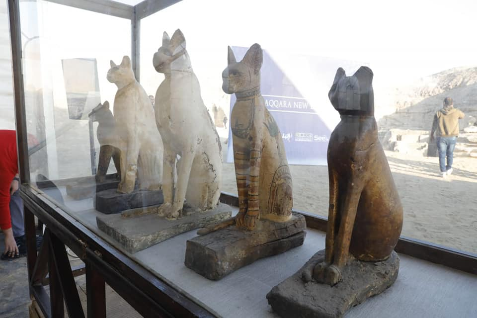 Wooden sarcophagoi containing mummified cats.