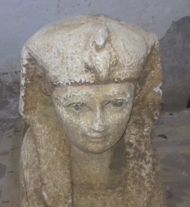 The head of the limestone sphinx. Photo courtesy: Ministry of Antiquities.