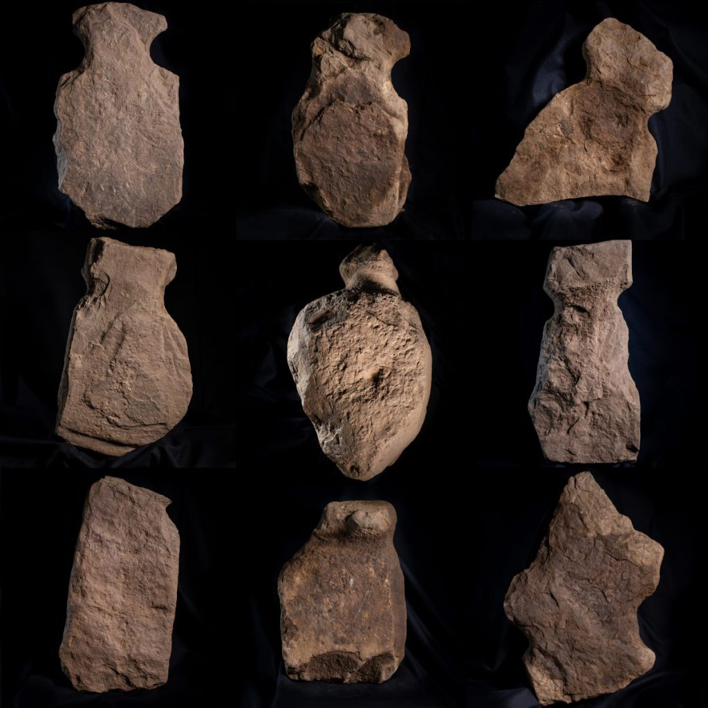 In total, nine carved stones have been unearthed in the remains of a structure revealed at the proposed Finstown substation site, after digging through sixty centimetres of midden deposits. Credit: ORCA Archaeology