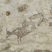 Indonesian cave art overturns thinking on the roots of human spirituality