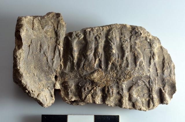 Fragment of decorated cretula, 3rd millennum BC. Photo: University of Pisa.