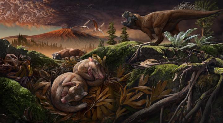 Reconstructed environment when Origolestes lii died at rest. Credit: ZHAO Chuang