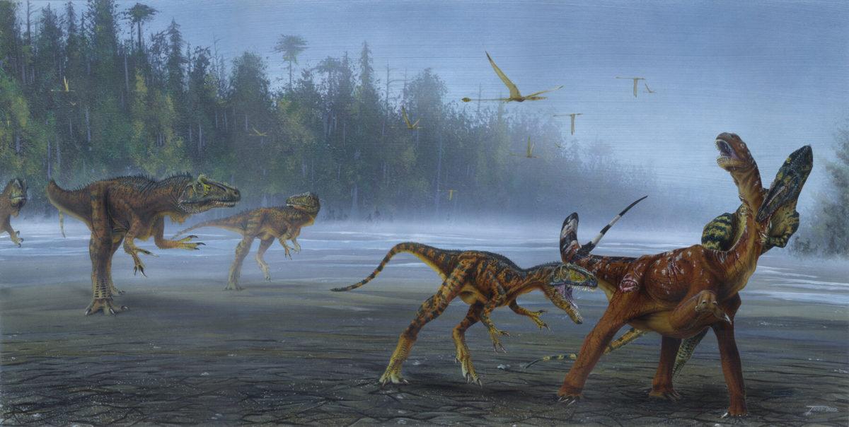 Allosaurus jimmadseni attack juvenile sauropod. Credit : Todd Marshall
