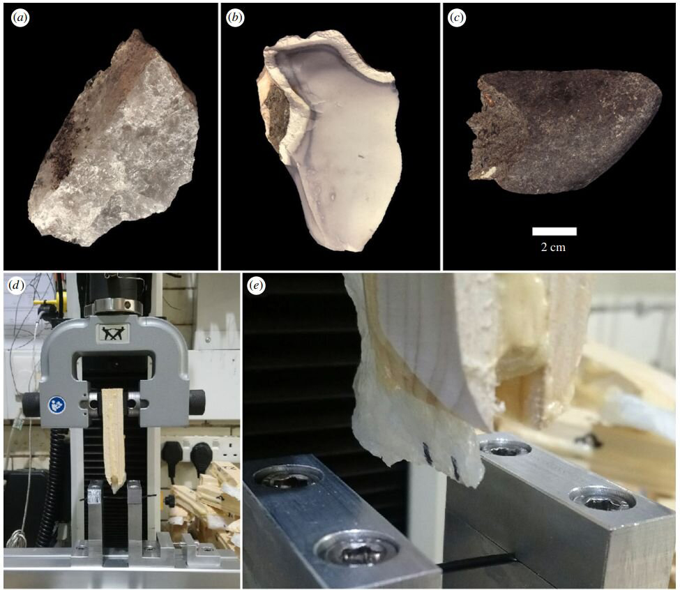 Representative flakes made from quartzite (a), chert (b) and basalt (c). The Instron 3345 tensile testing machine used during the controlled cutting tests (d). A quartzite flake, prior to being used to cut, is clearly depicted, along with the metal framework and PVC tubing (e). Credit: Journal of The Royal Society Interface (2020).
