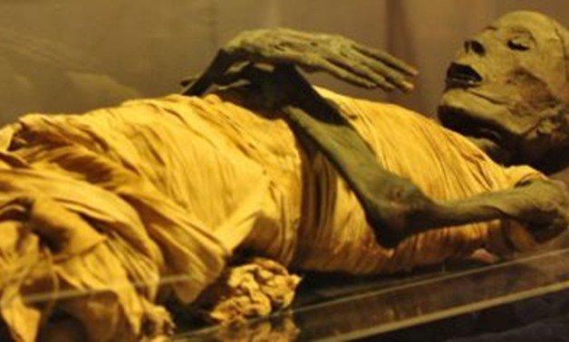 One of the royal mummies. Credit: Egypt Today.