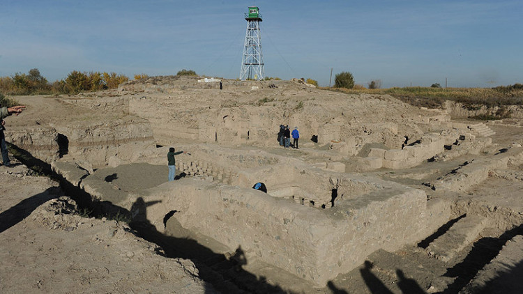 View of the site.