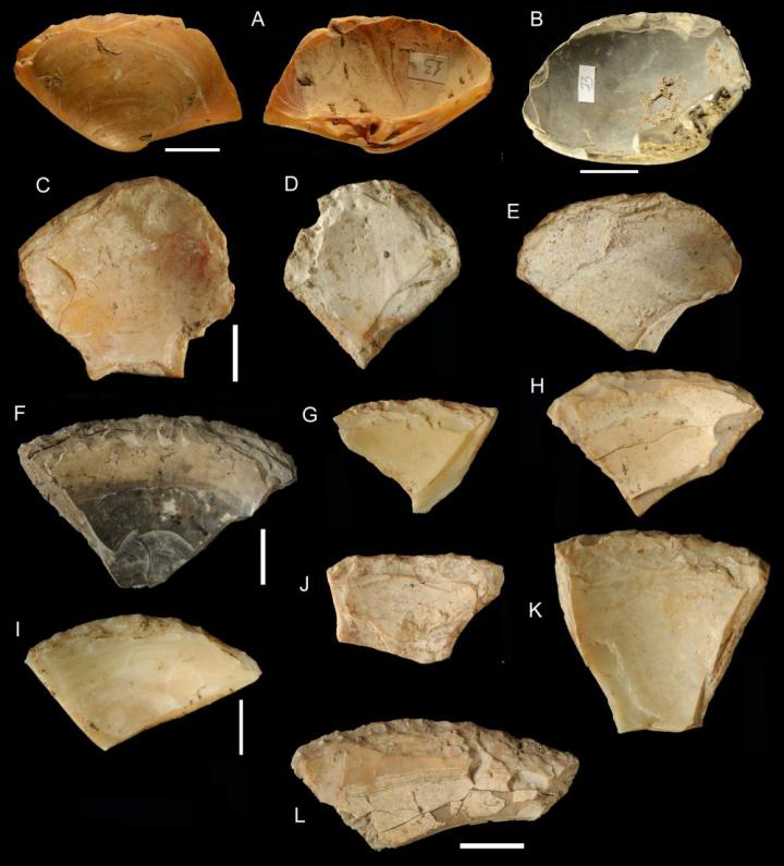 General morphology of retouched shell tools, Figs C-L are from the Pigorini Museum. Credit: Villa et al., 2020