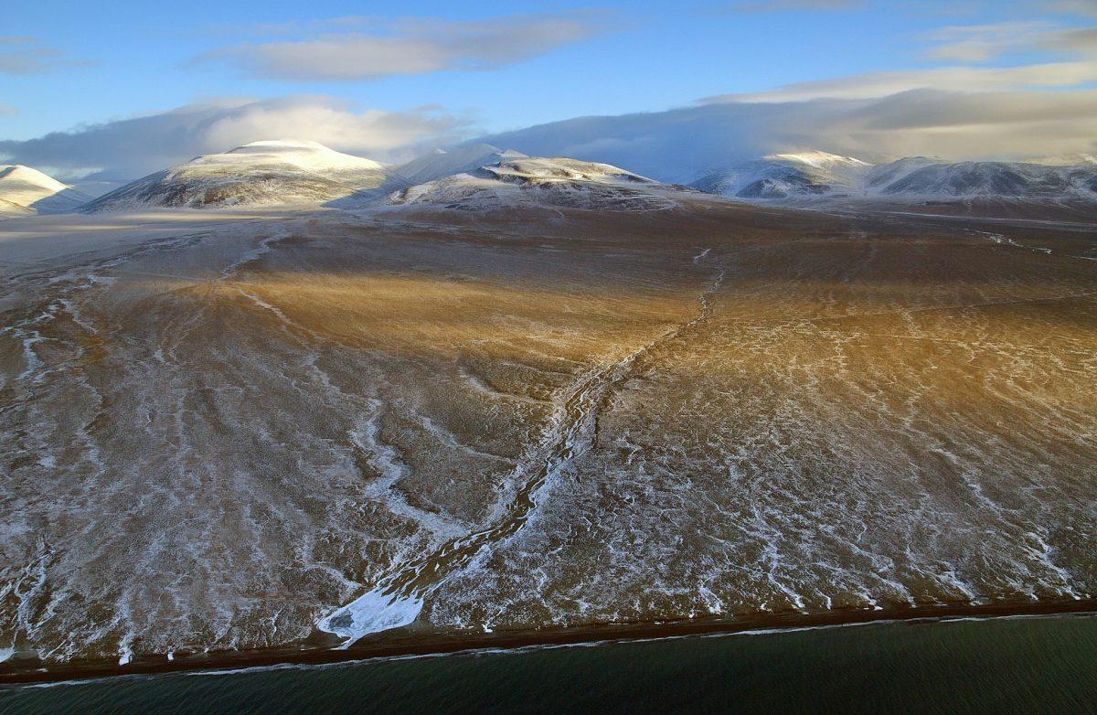 Wrangle Island. Credit : Boris Solovyev