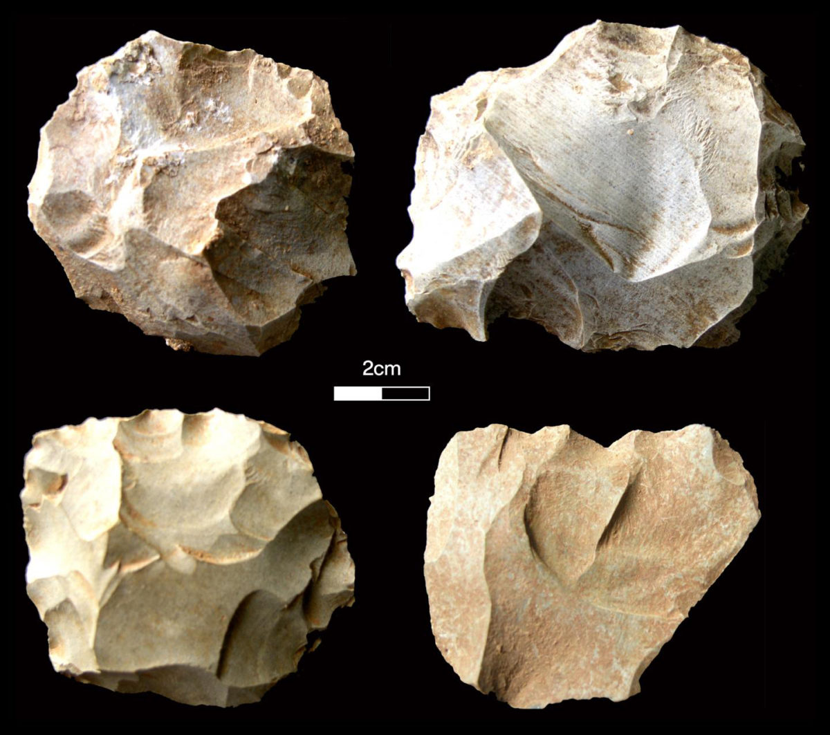 Stone tools found at the Dhaba site corresponding with the Toba volcanic super-eruption levels. Pictured here are diagnostic Middle Palaeolithic core types. Credit: Chris Clarkson
