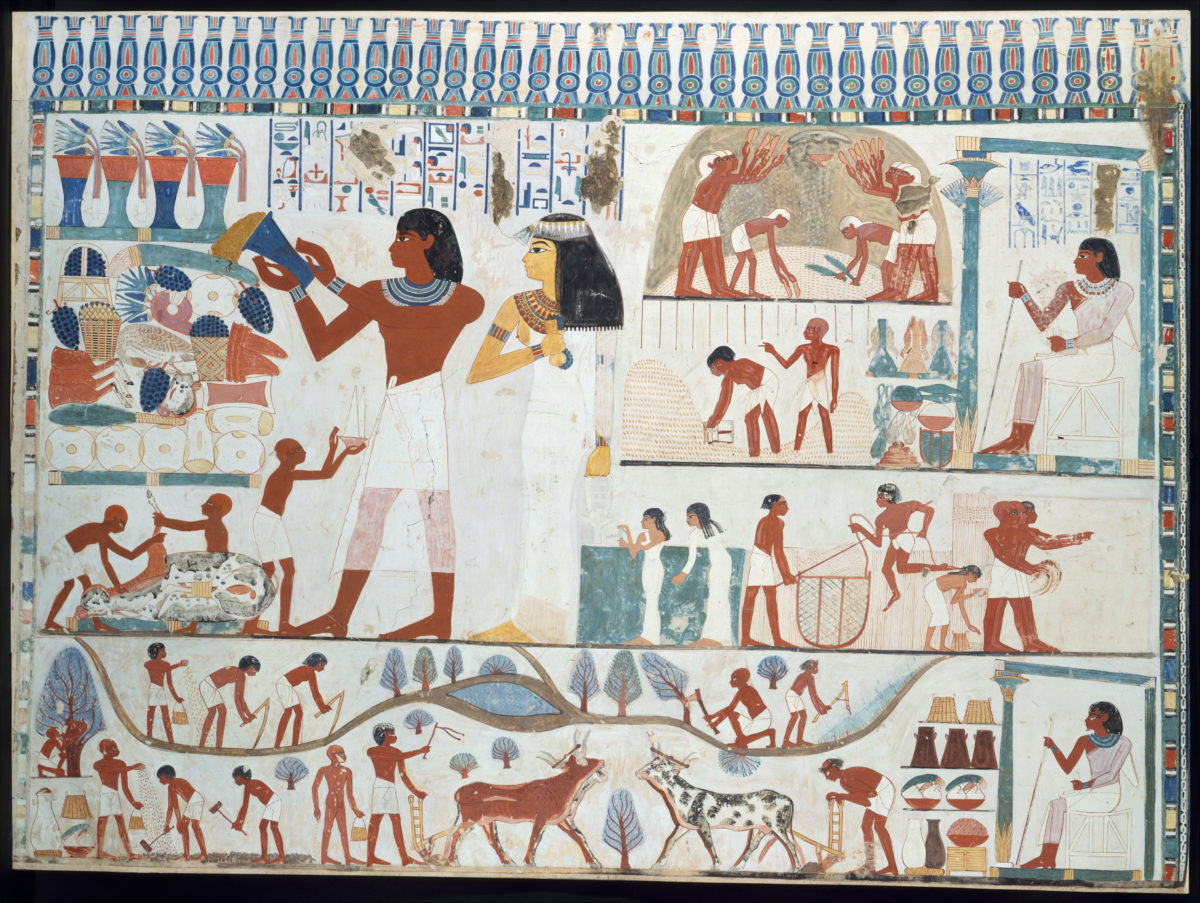 Beer as a signifier of social status in Ancient Egypt
