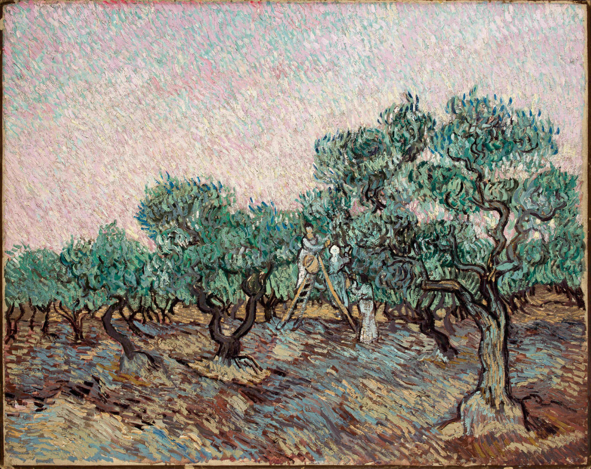 "Vincent Van Gogh: ""Olive Picking"" (December 1889). Museum of the B&E Goulandris Foundation."