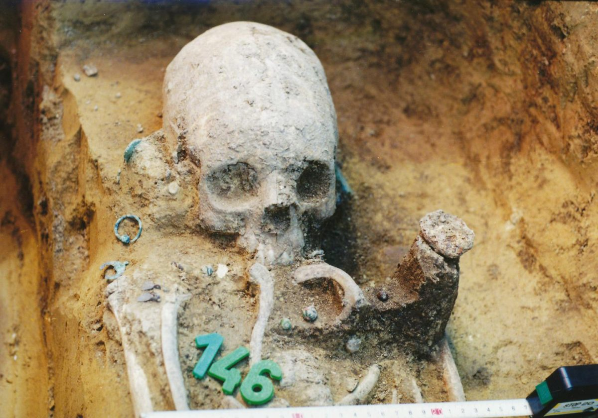 Upper part of the body of grave 43 during excavation.  Credit: Wosinsky Mór Museum, Szekszárd, Hungary.