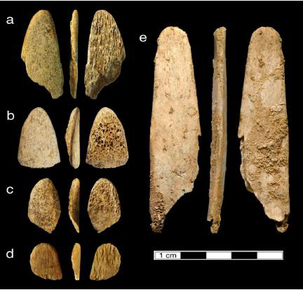 Evidence continues to mount that the Neandertals, who lived in Europe and Asia until about 40,000 years ago, were more sophisticated people than once thought. A new study from UC Davis shows that Neandertals chose to use bones from specific animals to make a tool for specific purpose: working hides into leather. Credit:  Naomi Martisius, UC Davis