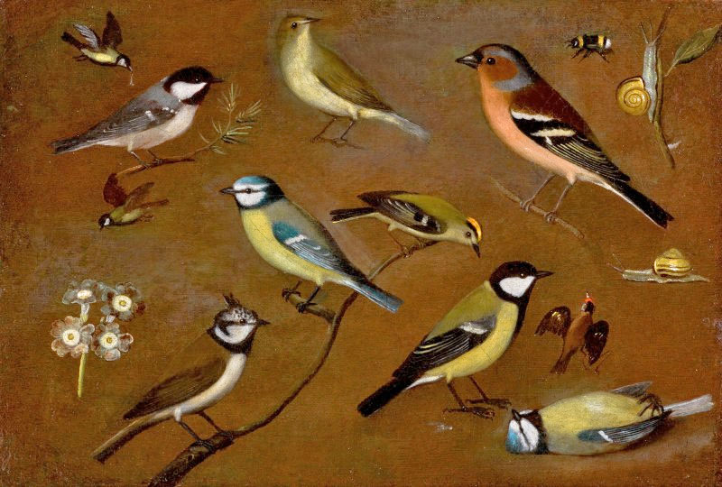 """""""Still life with birds"""", oil painting by the nun Orsola Maddalena Caccia (photo: Sotheby's)"""