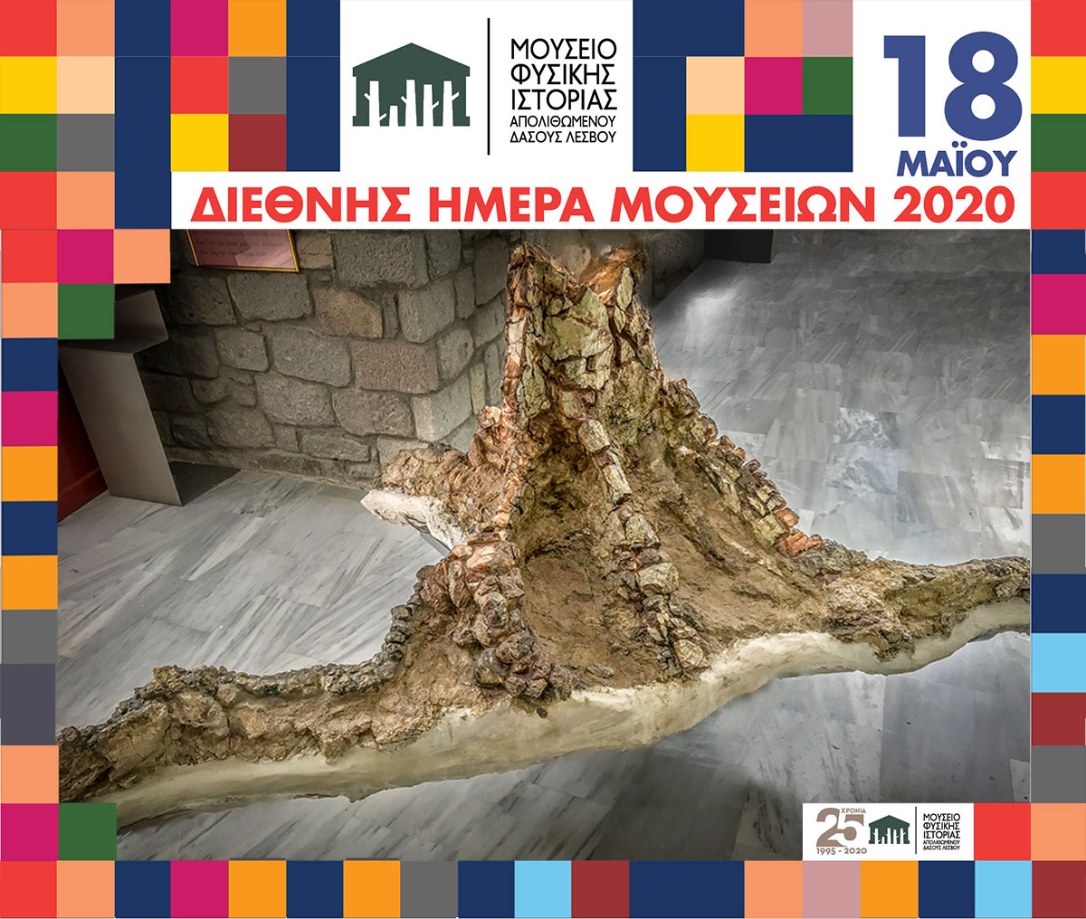 The fossilized trunk was discovered in 2015 during rescue excavations along the Kalloni-Sigri highway.
