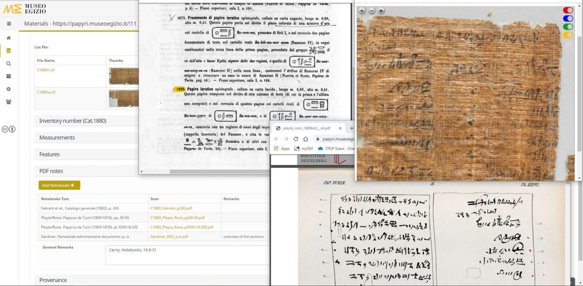 Using the Turin Papyrus Museum Platform