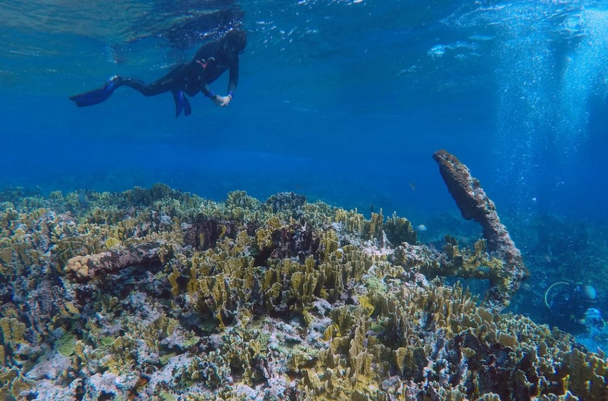 The reef lies in Mexican waters 35 kilometres (22 mi) offshore in the Caribbean Sea, or about 80 kilometres (50 mi) east of the city of Chetumal. Credit: INAH