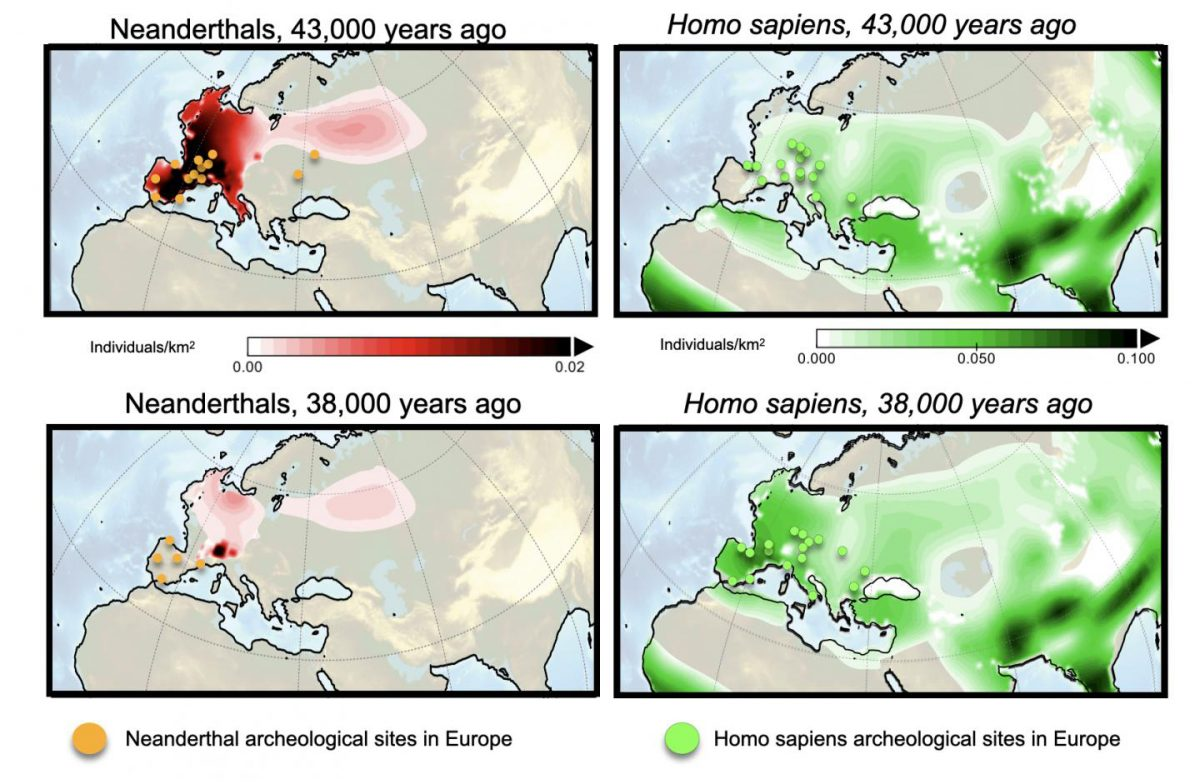 Computer simulations of population density of Neanderthals (left) and Homo sapiens (right) 43,000 years ago (upper) and 38,000 years ago (lower). Orange (green) circles indicate archeological sites of Neanderthals (Homo sapiens) during 5,000-year-long intervals centered around 43 and 38 thousand years before present. Credit: IBS
