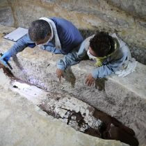 New Discoveries at the Mummification Workshop Complex at Saqqara