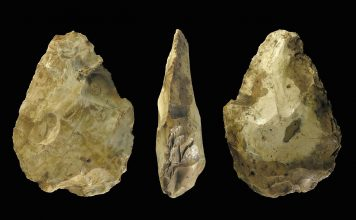 The study highlights a collection of 500,000 year-old flint axes unearthed from a gravel quarry in the village of Boxgrove in West Sussex. Credit: The Portable Antiquities Scheme (PAS)