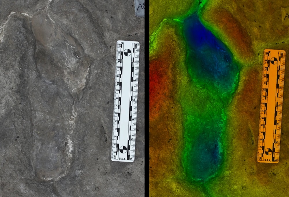 The footprints were discovered in Engare Sero, Tanzania by the local Maasai community and are believed to be the largest human fossil footprint record in Africa. Image Credit : Scientific Reports