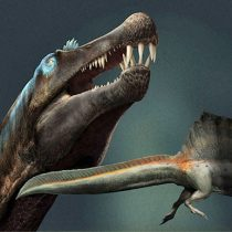 New fossils rewrite the story of dinosaur evolution and ecology