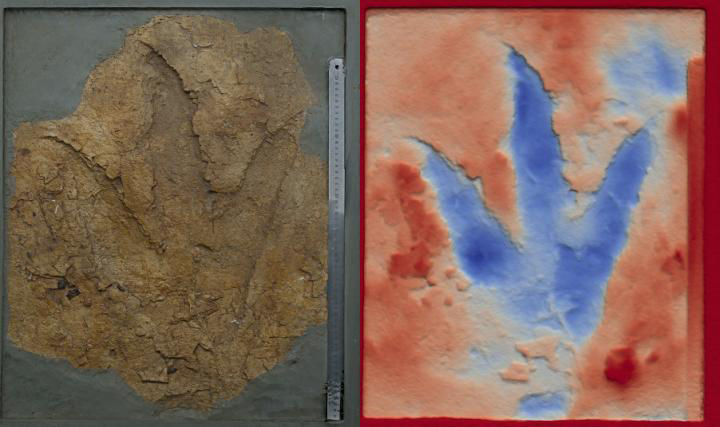 One of the dinosaur footprints from an Oakey mine (photograph and false-color deep map). Credit:  Dr Anthony Romilio